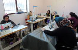 بنیاد برکت یکهزار و ۶۲۹ شغل در استان سمنان ایجاد کرد