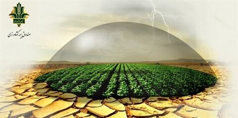 در سال زراعی ۴۰۰-۱۳۹۹ صورت گرفت: تحقق ۹۸ درصدی برنامه بیمه طیور توسط صندوق بیمه کشاورزی